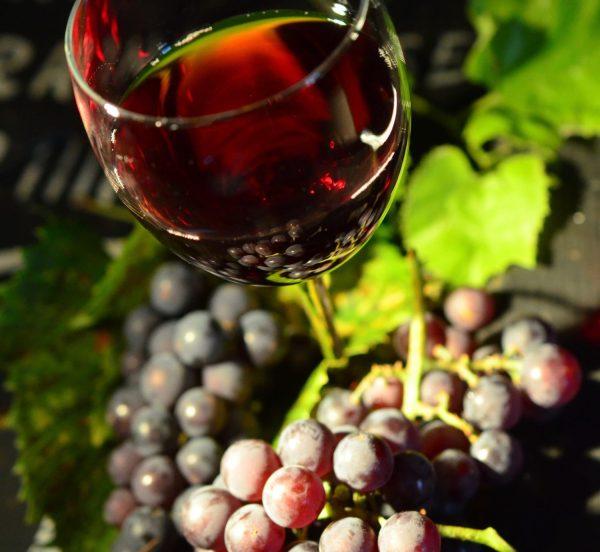 vino tinto uvas